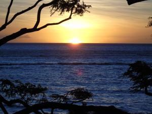 Aloha WAI2, Appartamenti  Kihei - big - 17