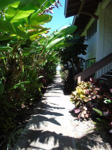 Aloha WAI2, Appartamenti  Kihei - big - 24