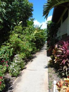 Aloha WAI, Apartmány - Kihei