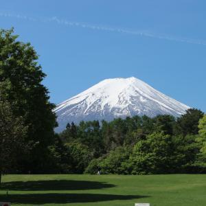 Hana Hostel Fujisan, Vendégházak  Fudzsijosida - big - 7