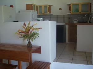 Appartement met 1 Slaapkamer The Nest Tobago Apartments