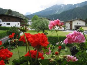 obrázek - Ferienhaus Rosa