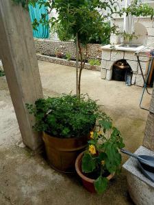 Apartment 4you - Donje Polje