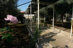 obrázek - Villa Flavio