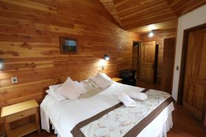 Santa Maria Pucon - Hotel - Pucón