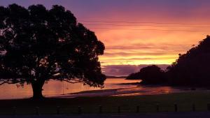 Oamaru Bay Tourist Park, Holiday parks  Coromandel Town - big - 20