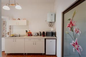Aim Studio, Appartamenti  Sibiu - big - 42