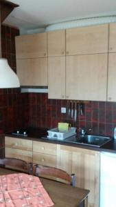 Bovec family apartment- great!