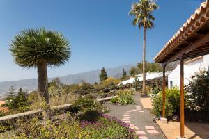 Casa Arándano, El Paso - La Palma