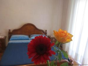 Lina House - AbcAlberghi.com