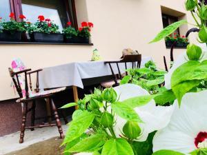 Summer house superiore, Appartamenti  Tuzla - big - 2