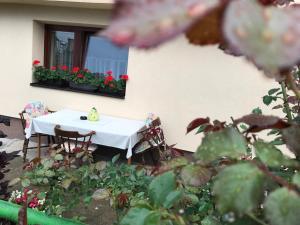 Summer house superiore, Appartamenti  Tuzla - big - 14