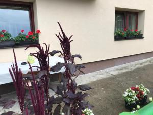 Summer house superiore, Appartamenti  Tuzla - big - 15