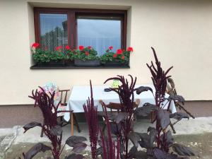 Summer house superiore, Appartamenti  Tuzla - big - 16