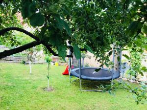 Summer house superiore, Appartamenti  Tuzla - big - 45