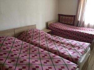 Tishe, Hostels  Omalo - big - 36
