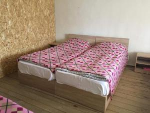 Tishe, Hostels  Omalo - big - 38