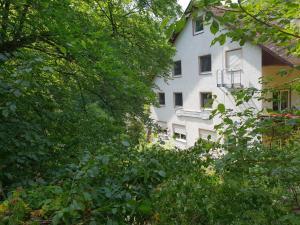 Hotel Elfenmühle, Penzióny  Bad Bertrich - big - 80