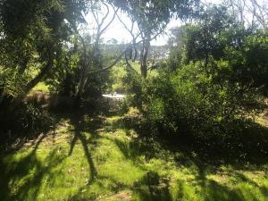 Phillip Island Nature Resort, Vily  Cowes - big - 54