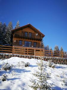 Cabana Cindy, Holiday homes  Muntele Cacovei - big - 26