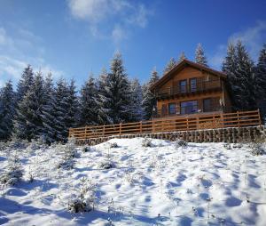Cabana Cindy, Holiday homes  Muntele Cacovei - big - 27