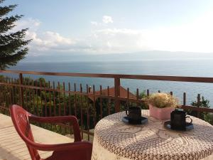 Ohrid Eastern Paradise - Konjsko