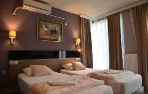 Hotel Leon, Hotely  Debar - big - 27