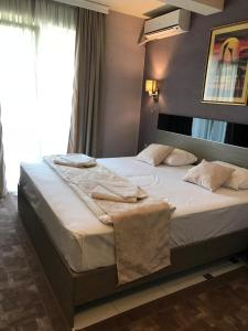 Hotel Leon, Hotely  Debar - big - 12