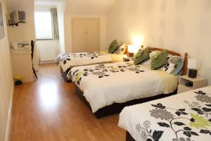 Westbrook House Guest Accommodation, Bed & Breakfasts  Ennis - big - 48