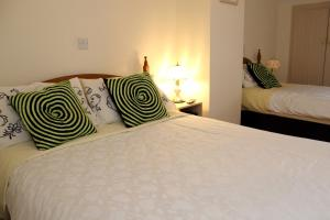 Westbrook House Guest Accommodation, Bed & Breakfasts  Ennis - big - 50