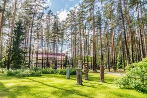 Raivola, Resort  Roščino - big - 57