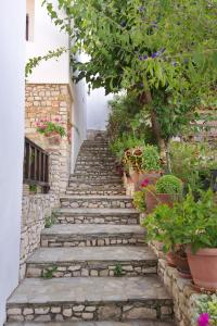 Pension Andromeda Alonissos Greece