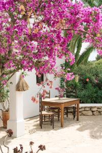 Legado Ibiza Finca Hotel (3 of 75)