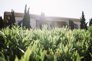 Emelisse Nature Resort (40 of 107)
