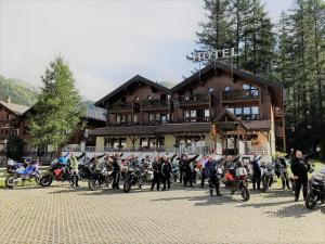 Hotel Alpenhof, Hotely  Oberwald - big - 30