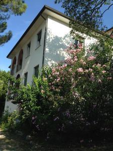 A green oasis - AbcAlberghi.com