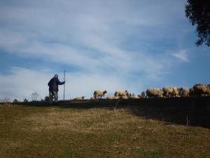 Turismo Rural Can Pol de Dalt - Bed and Bike, Case di campagna  Bescanó - big - 36