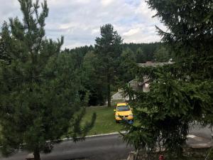 Kuca na Zlatiboru, Holiday homes  Zlatibor - big - 7