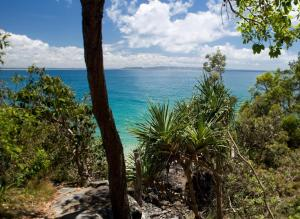 Sofitel Noosa Pacific Resort (39 of 70)