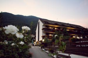 Pippo Hotel - AbcAlberghi.com