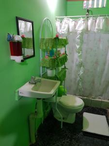 Tortuguero Green House