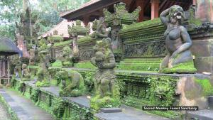 ZEN Rooms Ubud Dewi Sita, Гостевые дома  Убуд - big - 11