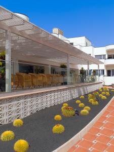 H10 Ocean Dunas - Adults Only, Hotel  Corralejo - big - 15