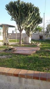 obrázek - Lidia's Home