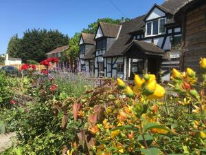 obrázek - The Thatch Inn