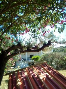 Casa Santa Agua Ammouliani Greece