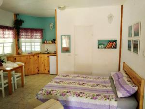 Jordan Valley one room apartment - Um Qeis