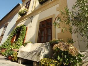 TiMiMoo The smallest Hotel in Austria - Vienna