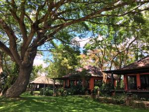 Baan Nam Ping Riverside Homestay - Ban Muang