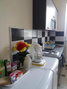 PS Apartments, Affittacamere  Peštani - big - 8